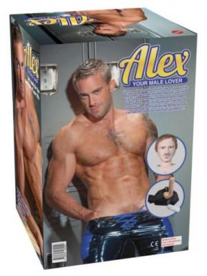 Alex Doll